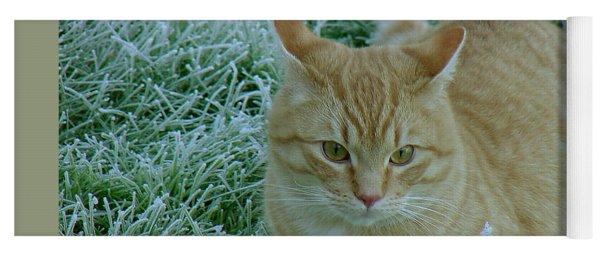 Cat In Frosty Grass Yoga Mat