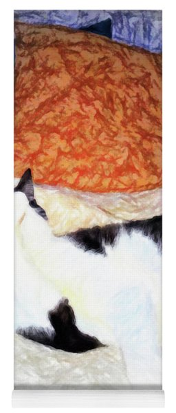 Cat Nap - Zen And The Art Of Washing Yoga Mat