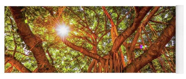 Catch A Sunbeam Under The Banyan Tree Yoga Mat