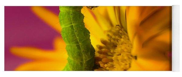 Caterpillar In Flower Yoga Mat
