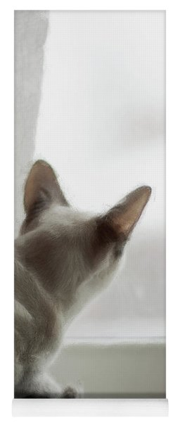 Cat In The Window Yoga Mat