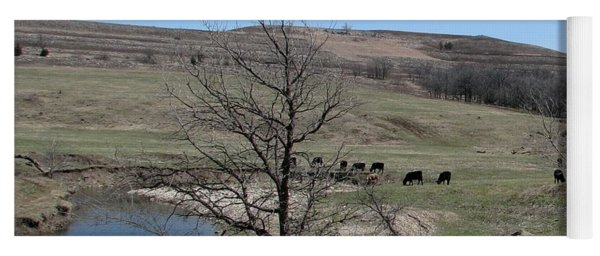 Cattle Along Deep Creek Yoga Mat