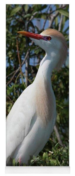 Cattle Egret Pose Yoga Mat