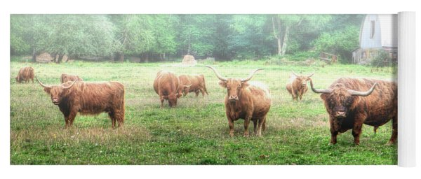 Cattle In The Mist Yoga Mat