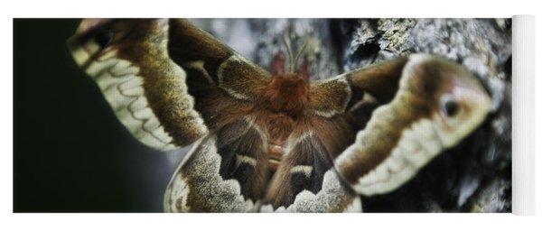 Cecropia Moth Yoga Mat
