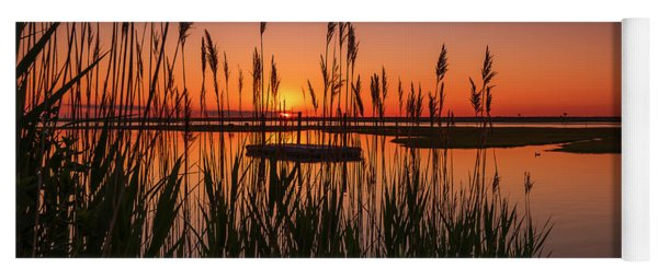 Cedar Beach Sunset In The Reeds Yoga Mat