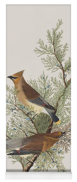 Cedar Bird Yoga Mat