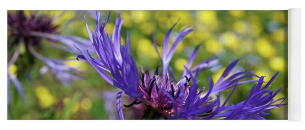 Centaurea Montana Flower Yoga Mat