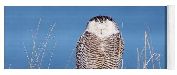 Centered Snowy Owl Yoga Mat
