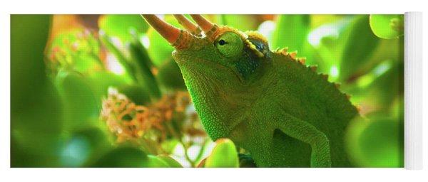 Chameleon King Yoga Mat