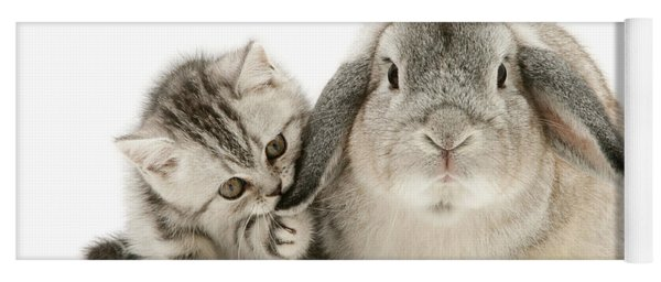 Checking For Grey Hares Yoga Mat