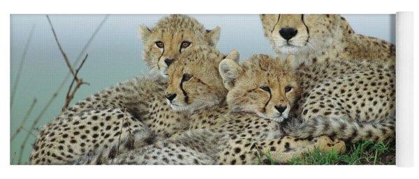 Cheetah And Her Cubs Yoga Mat