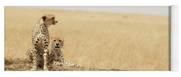 Cheetah Pair In The Masai Mara Yoga Mat