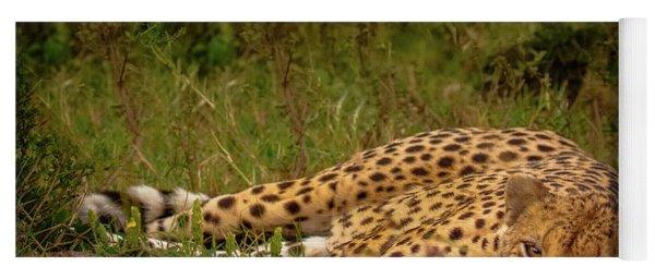 Cheetah Resting, Masai-mara Yoga Mat