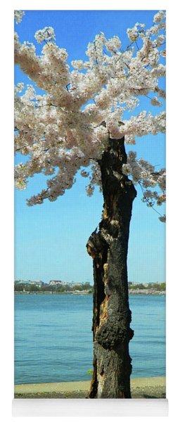 Cherry Blossom Portrait Yoga Mat