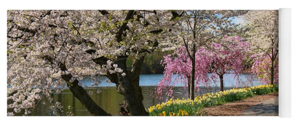 Cherry Blossom Trees Of Branch Brook Park 17 Yoga Mat