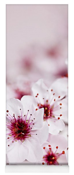 Cherry Blossoms Yoga Mat