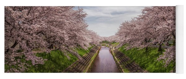 Yoga Mat featuring the photograph Cherry Blossoms In Nara by Rikk Flohr