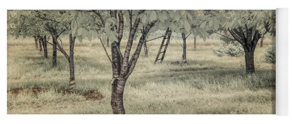 Cherry Orchard In Infrared Yoga Mat