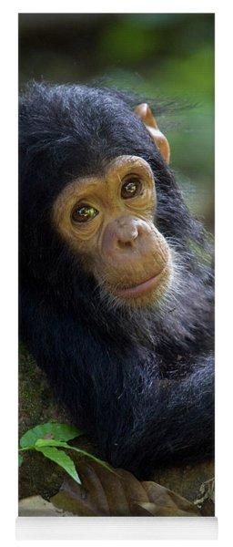 Chimpanzee Pan Troglodytes Baby Leaning Yoga Mat