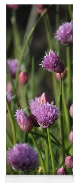 Chive Flowers Yoga Mat