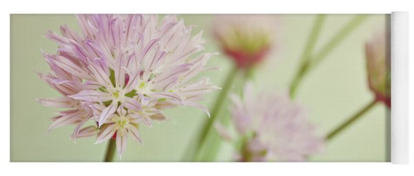 Chives In Flower Yoga Mat