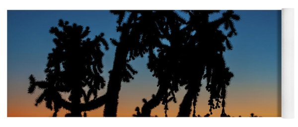 Yoga Mat featuring the photograph Cholla Silhouettes by Rick Furmanek