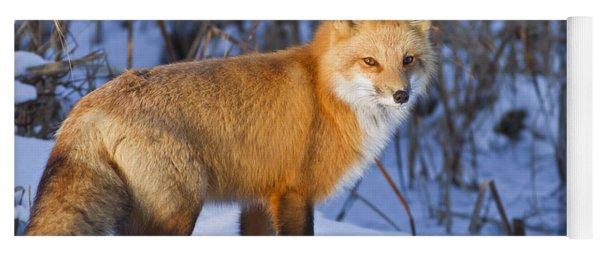 Christmas Fox Yoga Mat