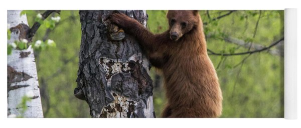 Cinnamon Climb Yoga Mat