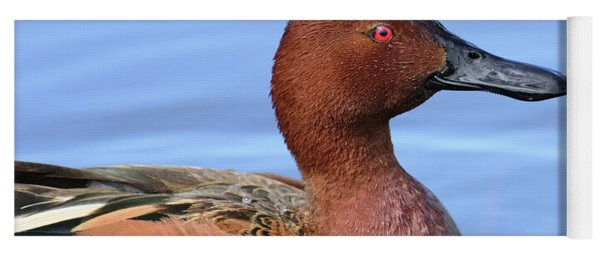 Yoga Mat featuring the photograph Cinnamon Teal by Craig Leaper