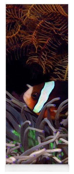 Clark's Anemonefish, Indonesia 2 Yoga Mat