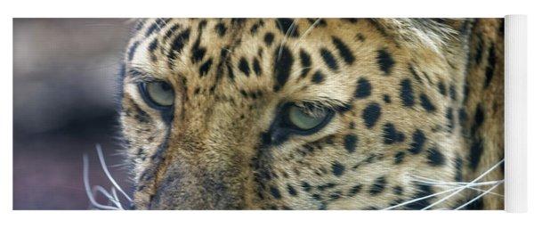 Close Up Of Leopard Yoga Mat