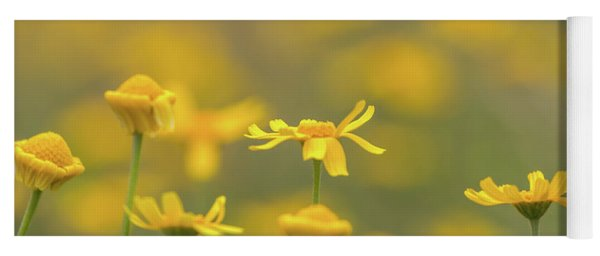 Close Up Of Yellow Flower With Blur Background Yoga Mat