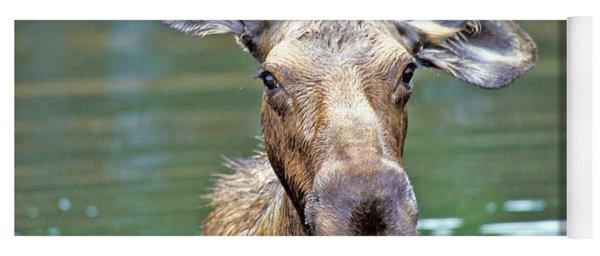 Close Wet Moose Yoga Mat