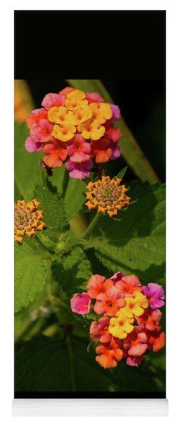 Cluster Of Lantana Flowers Yoga Mat