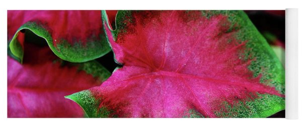 Caladium Variation Yoga Mat