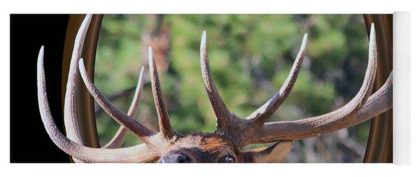 Colorado Bull Elk Yoga Mat