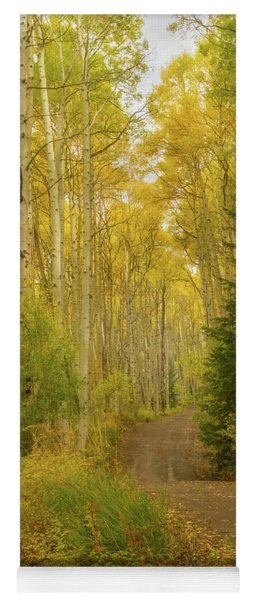 Colorado Fall Dirt Road Yoga Mat