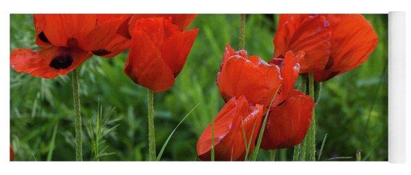 Colorado Wild Poppies Yoga Mat