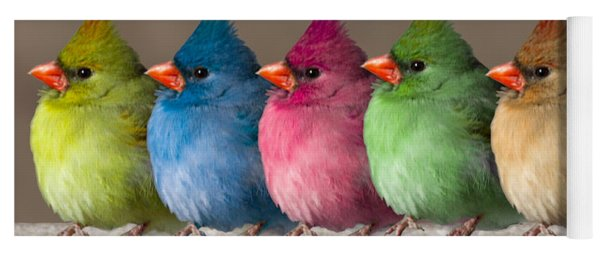 Colored Chicks Yoga Mat