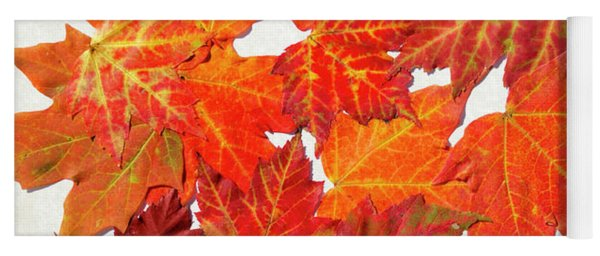 Colorful Maple Leaves Yoga Mat