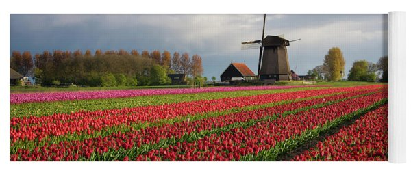 Colorful Rows Of Tulips In Front Of A Windmill Yoga Mat