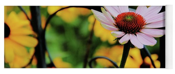 Coneflower Moment For Pondering Yoga Mat