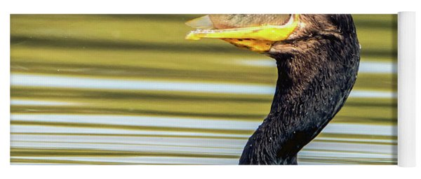 Cormorant With Fish 0977-111217-1cr Yoga Mat