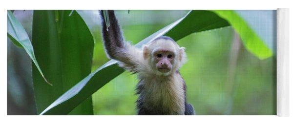 Costa Rica Monkeys 1 Yoga Mat