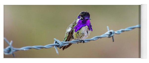 Costa's Hummingbird Yoga Mat