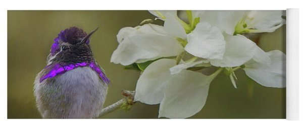 Costas Hummingbird On An Anacacho Orchid Branch Yoga Mat