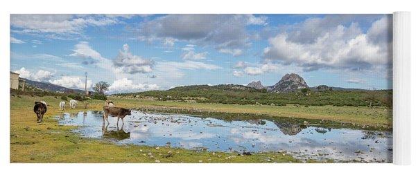 Reflected Cows  Yoga Mat