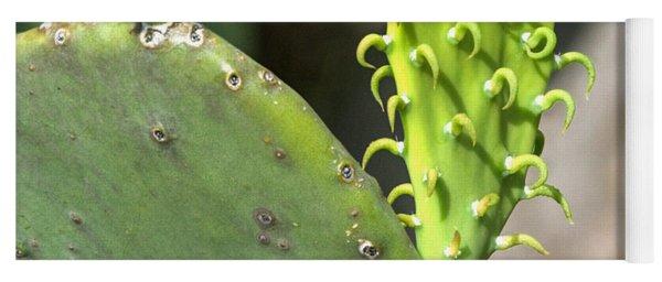 Cow's Tongue Prickly Pear Yoga Mat