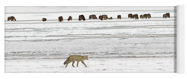 Coyote And Bison Yoga Mat